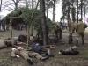 Podgórz Żołnierzom Wyklętym - inscenizacja - 4